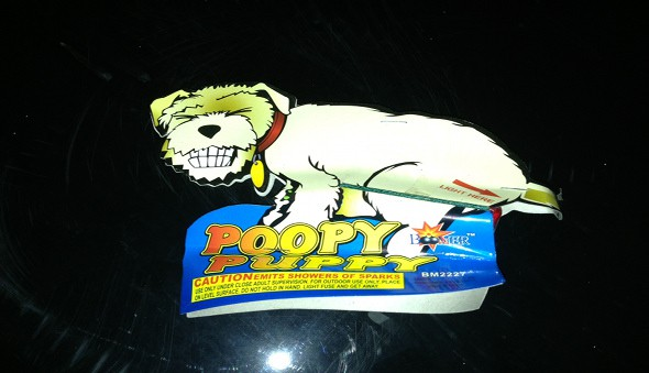 poopy puppy fireworks