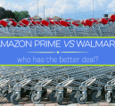 Amazon Prime vs Walmart: a comparison of prices between both places to see who comes out on top.