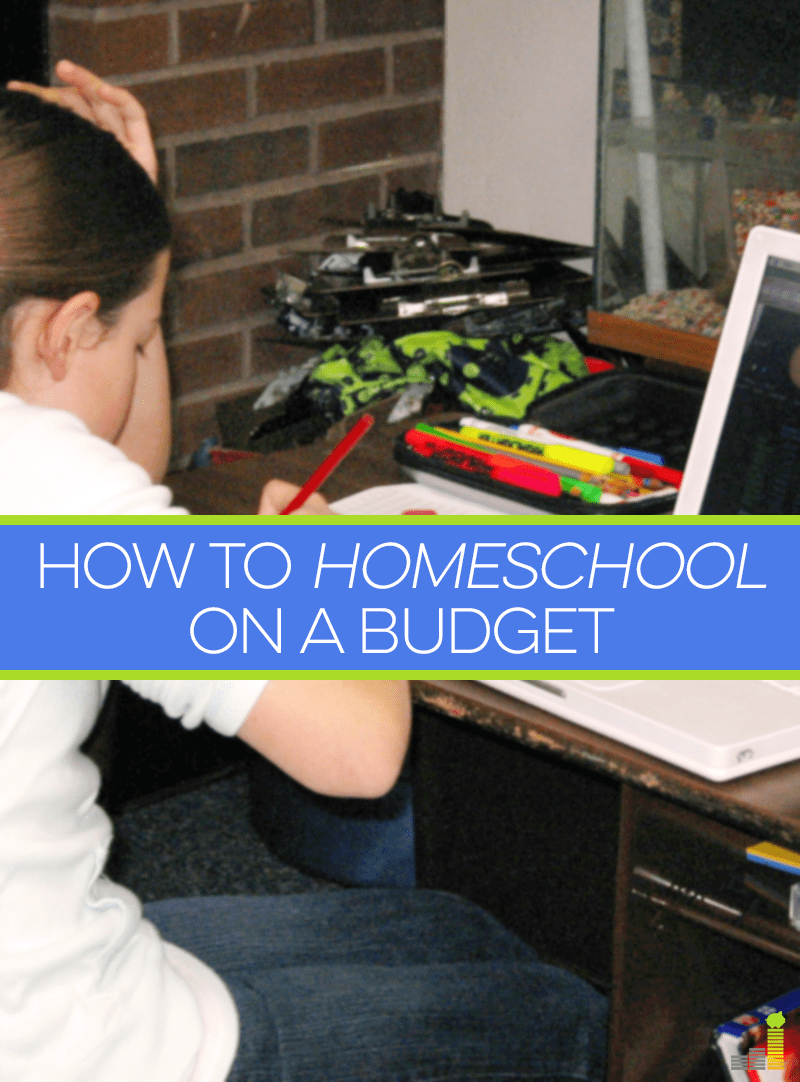 If you want to homeschool on a budget, choose your curricula wisely, look for free resources and prioritize your spending on your child's education.