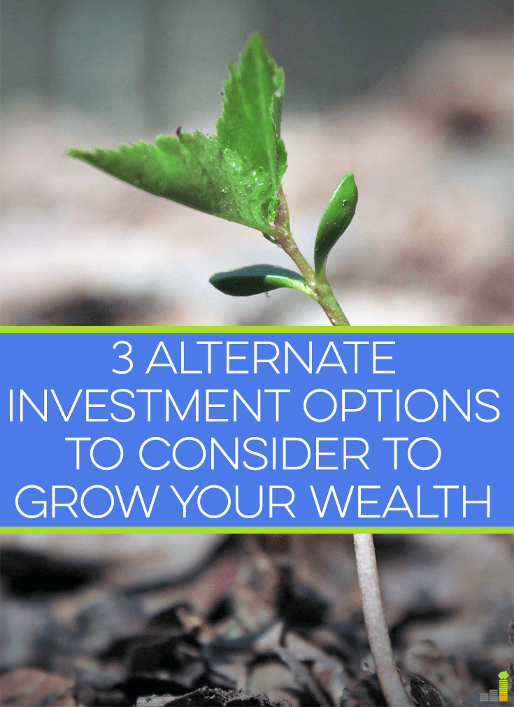 Alternative investment options can be a great way to diversify and grow your wealth. I share some alternative investments to the stock market you may miss.