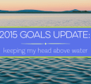 With 4 months in on 2015 I thought it would be good to go over my goals. It has been a whirlwind of a year and trying to keep my head above water most days.