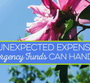 Don't think you need money saved for a rainy day? Think again. Here are 5 crazy unexpected expenses emergency funds can cover in case Murphy's Law prevails.