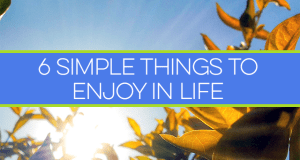 Sometimes, the best things in life are the most basic things we forget to appreciate, and they're often free. Here are 6 simple things to enjoy in life!