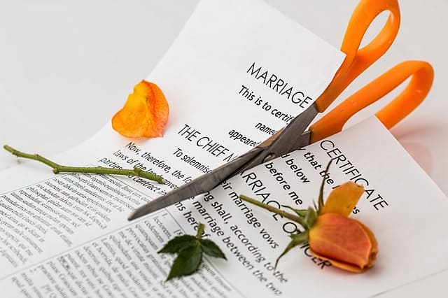 The High Cost of Divorce