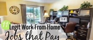 Legitimate work-from-home jobs are a great way to earn a salary. Here's our list of the 11 best home-based work opportunities that let you earn $20+ per hour.