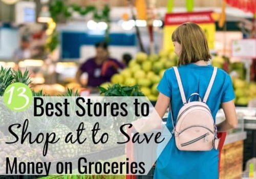Looking for cheap grocery stores near me and don't know where to shop? Here are the 13 best affordable stores to shop at and reduce your grocery bill.
