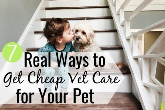 Do you wonder how you can find cheap vet care near me? It's possible, with some work. Here are the 7 best ways to find cheap vets who offer quality care.