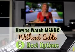 Do you want to watch MSNBC without cable but don't know where to start? We share the 5 best ways to get MSNBC without cable and stay up-to-date on the news.